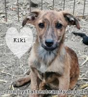 Kiki7