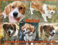 Maike Collage