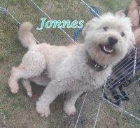 Jonnes
