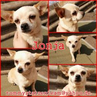 Jonja Collage